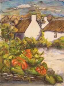 Citrouilles dans un jardin breton